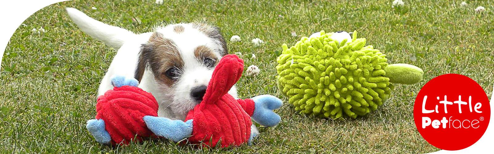 Little Petface - Speeltjes voor Puppies