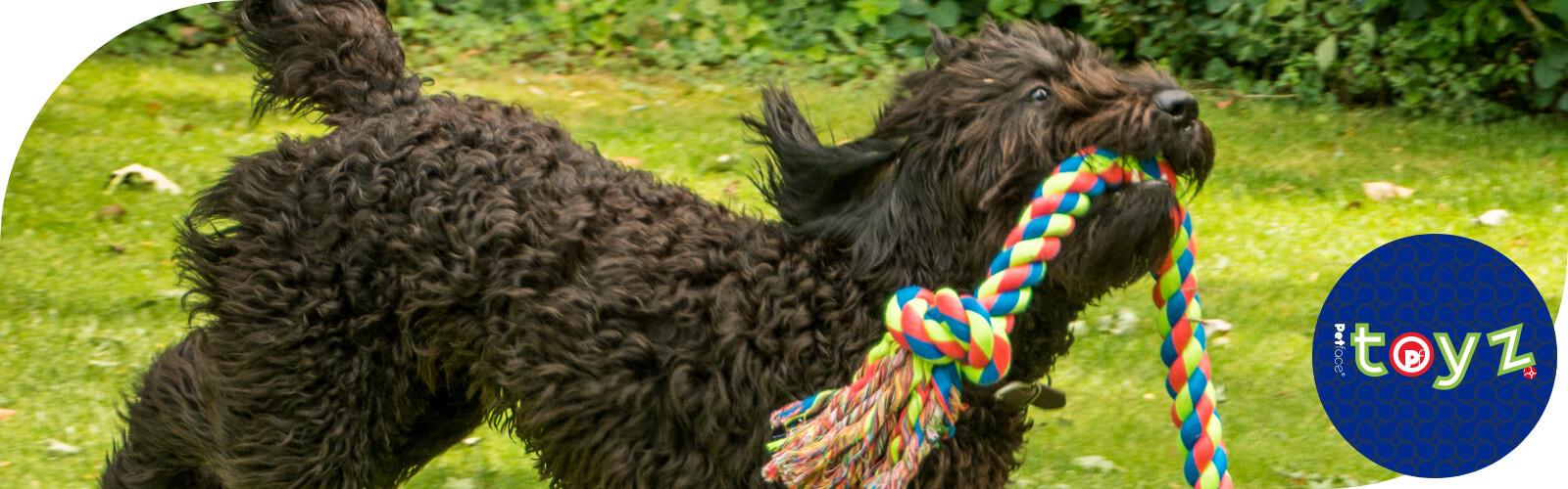 Toyz - Speelgoed voor honden