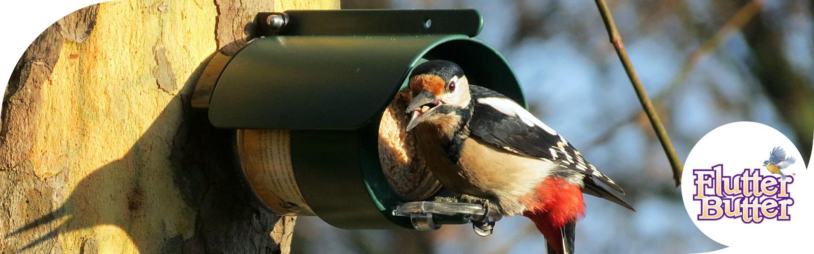 Wist je dat de tuinvogels gek zijn op pindakaas?