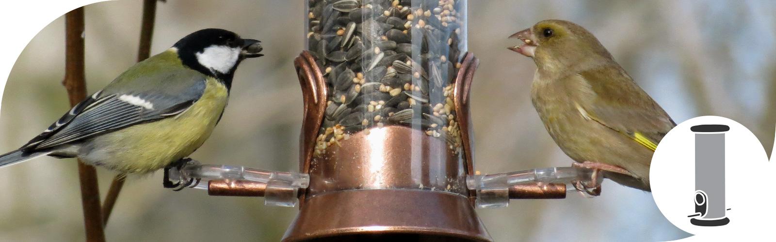 Voedersilo's - Dé manier om vogels te voeren