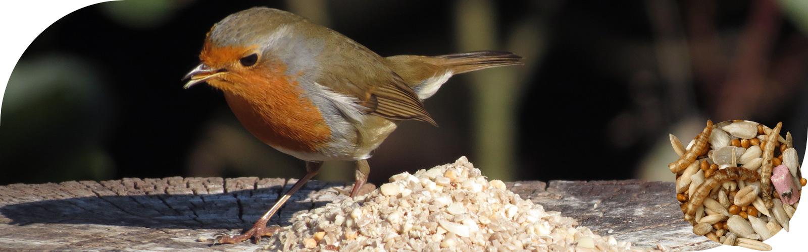 Speciaal voer - Speciaal vogelvoer voor specifieke vogelsoorten