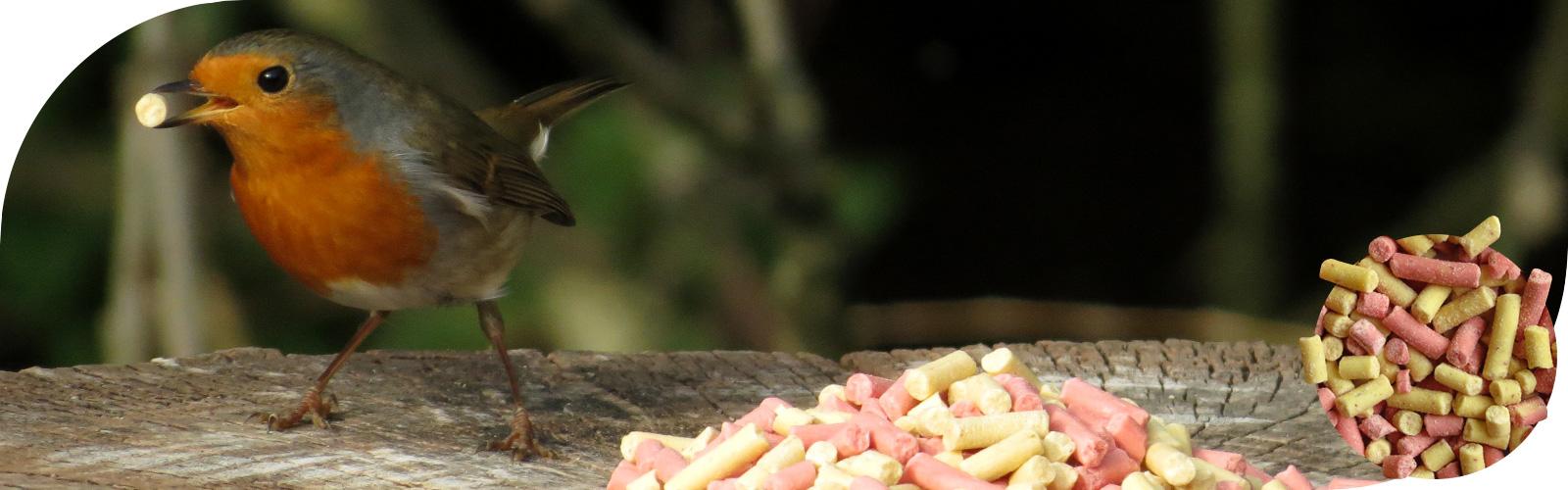 Vet traktatie - Ideaal voor veel verschillende vogels